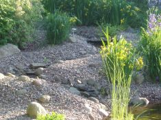 Gartenbau-Bolowski011