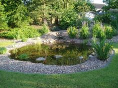 Gartenbau-Bolowski015