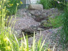 Gartenbau-Bolowski018