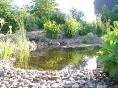 Gartenbau-Bolowski024