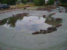 Gartenbau-Bolowski060